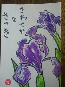 IMG_0797